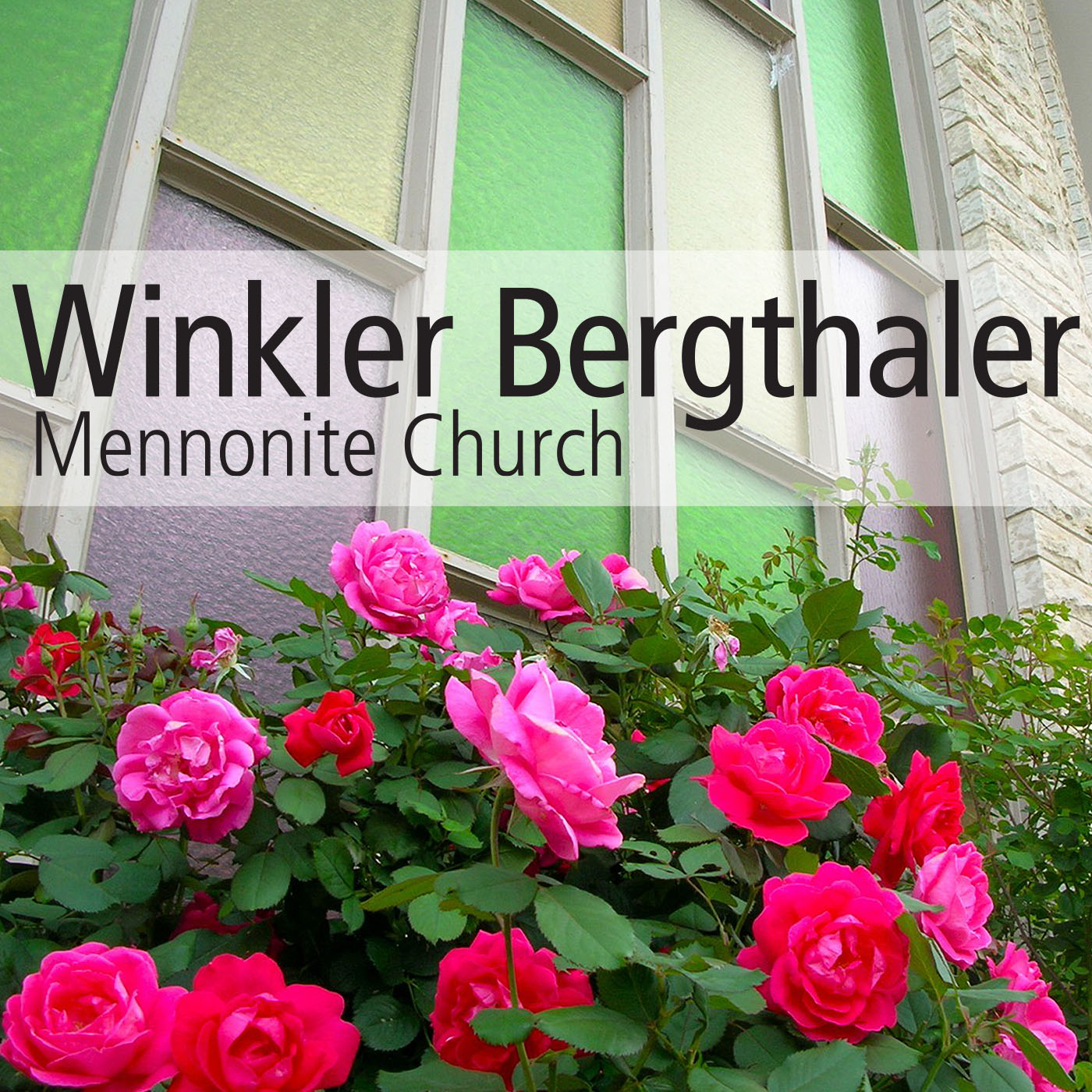Winkler Bergthaler Mennonite Church